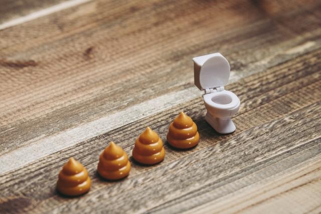 トイレうんちの臭いのイメージ