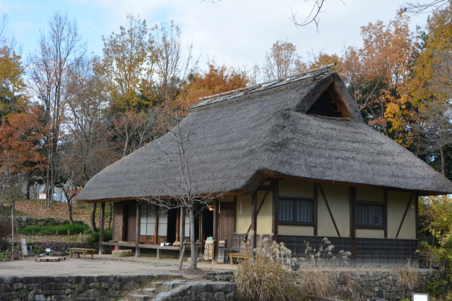 昔の家は、寒くて暑いが、ハウスダストのリスクは低かった。